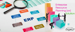 ERP_solution_company